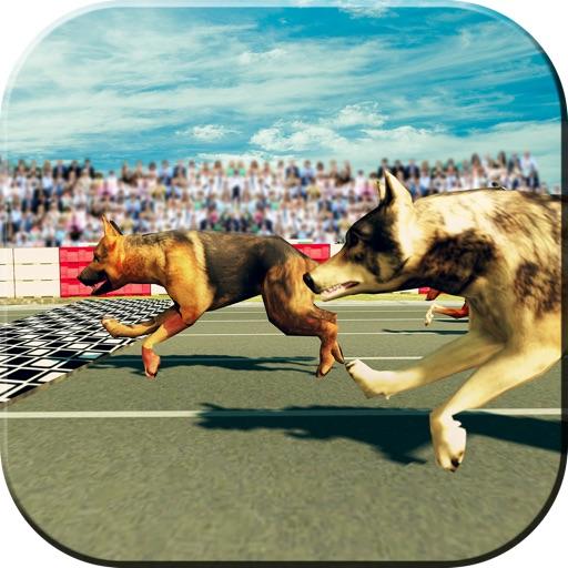 Cute Dog Racing Simulator