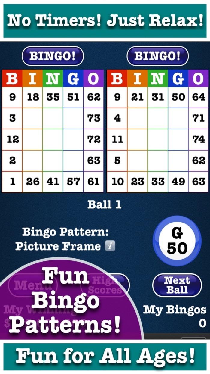 Totally Bingo! by Boy Howdy Screenshot