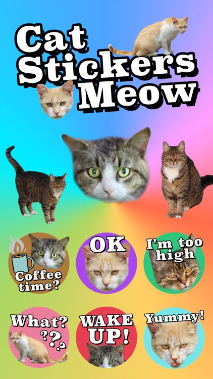 Cat Stickers Meow