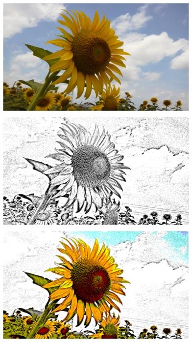 写真で銅版画 - エッチング風写真加工アプリ紹介画像2