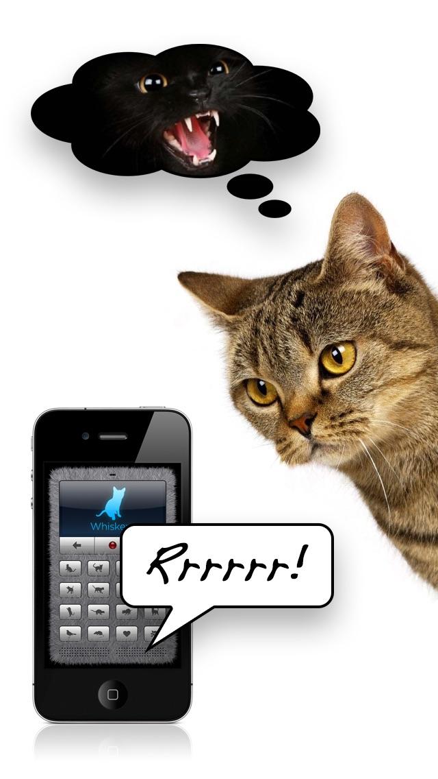 Screenshot #2 pour Traducteur en langage chat +
