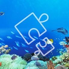 Activities of Blue Ocean Jigsaw