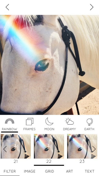 Rainbow Love Photo Editor