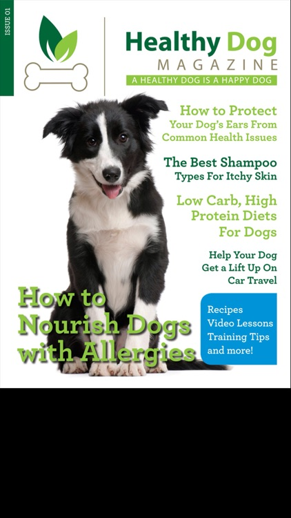 Healthy Dog Magazine