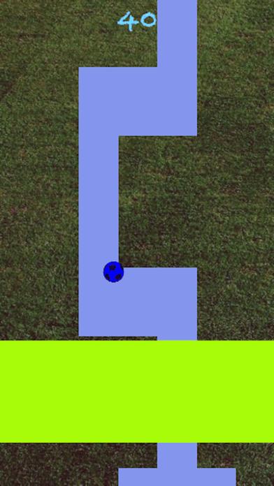 Line Roll - Premium screenshot 3