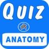 臨床解剖学テスト