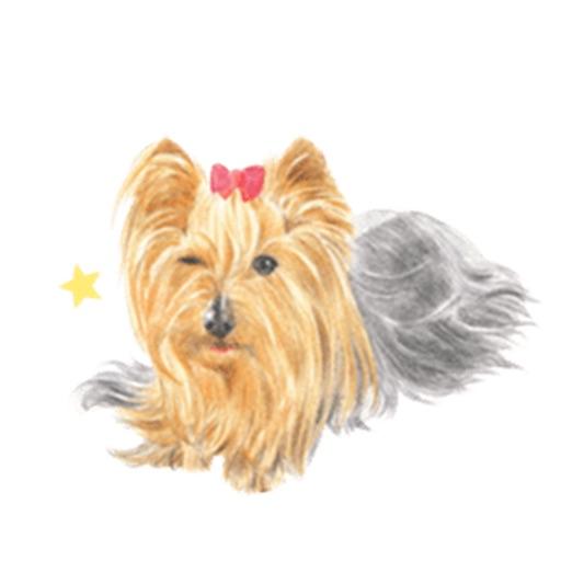 Yorkie Dog Stickers