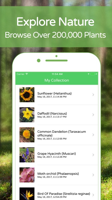 download PlantSnap Plant Identification apps 2