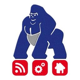 Gorilla by PIAS