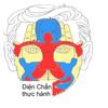 DienChan Thuc Hanh
