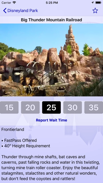 Wait Times for Disneyland