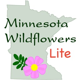 Minnesota Wildflowers Lite