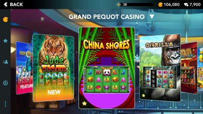 Which Are Bonuses and How to Get Them in an On the net Casino?