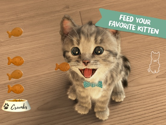 Little Kitten App Screenshot