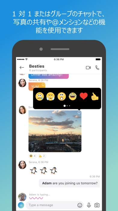 Skype for iPhone ScreenShot1