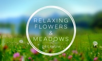 Relaxing Flowers & Meadows Premium - Relaxing Ambients