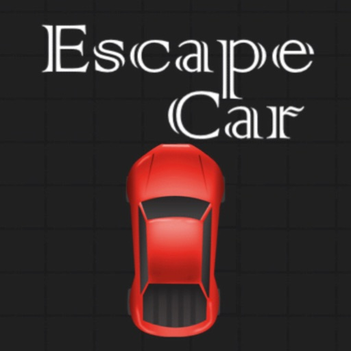 Escape Car vs Cops