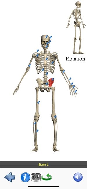 Visual Anatomy Lite im App Store
