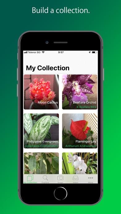 Screenshot for PlantSnap Pro: Identify Plants in New Zealand App Store