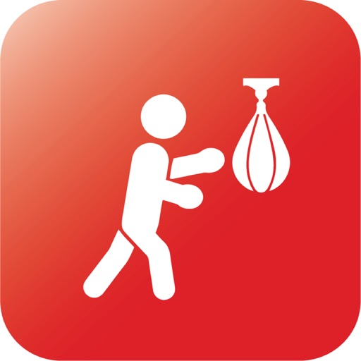 Speed Bag Boxing Trainer