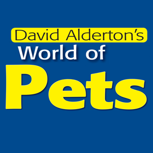 World of Pets app