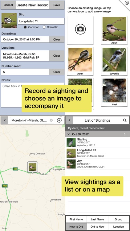 Birds of Britain Pro screenshot-6