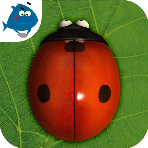 minuscule Busy Bugs!