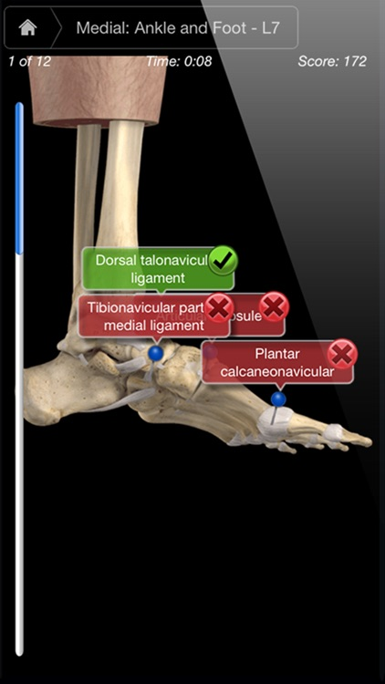 Ankle & Foot Pro III