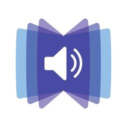 VoicePlayer