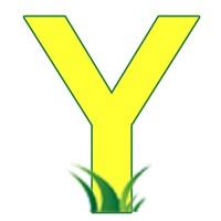 Yard sales and garage sales