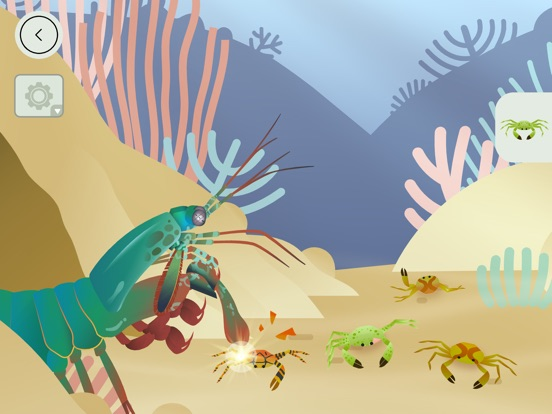 Coral Reef by Tinybop Screenshots
