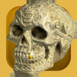 Free the Fleadh Skull