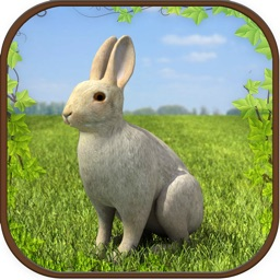 Extreme Rabbit 3D Simulator