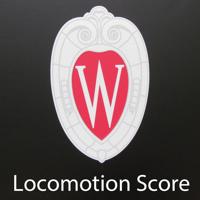 点击获取Loco Score