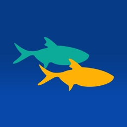 FishDonkey