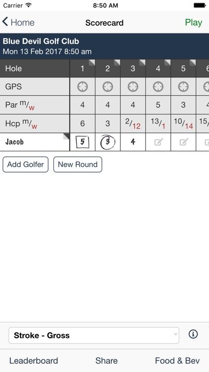 Blue Devil Golf Club screenshot-3