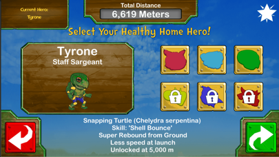 Healthy Home Heroes: FF screenshot four