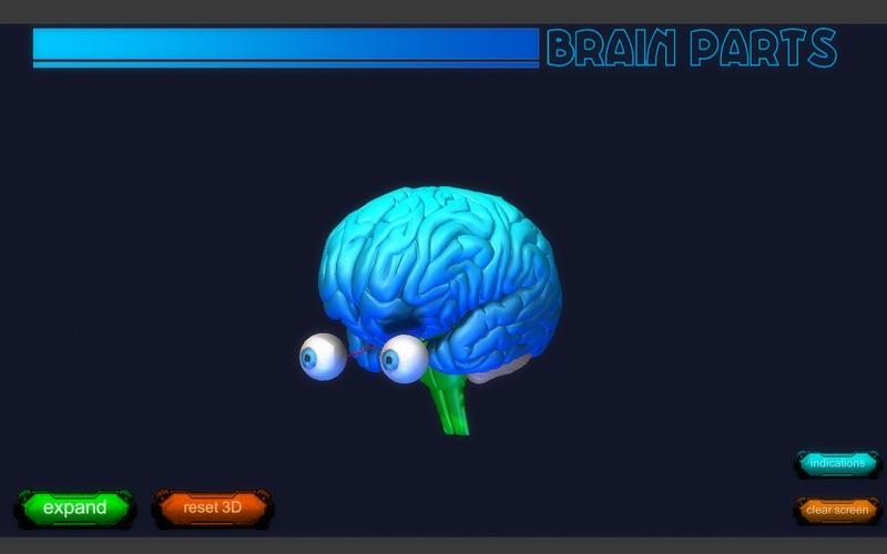 Brain Parts 3D скриншот программы 3