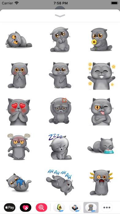 Mr. Furburt by Moji screenshot 4