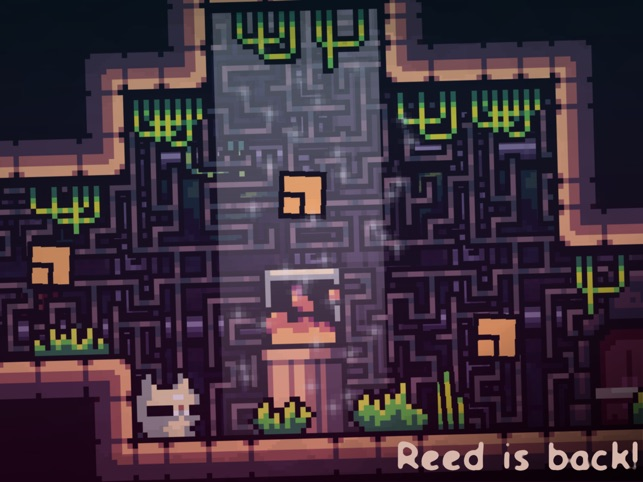 Reed 2 Screenshot