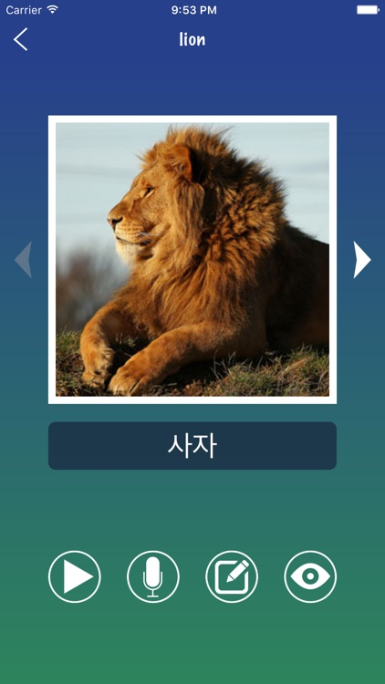 Korean Word Flashcards Learn screenshot-2