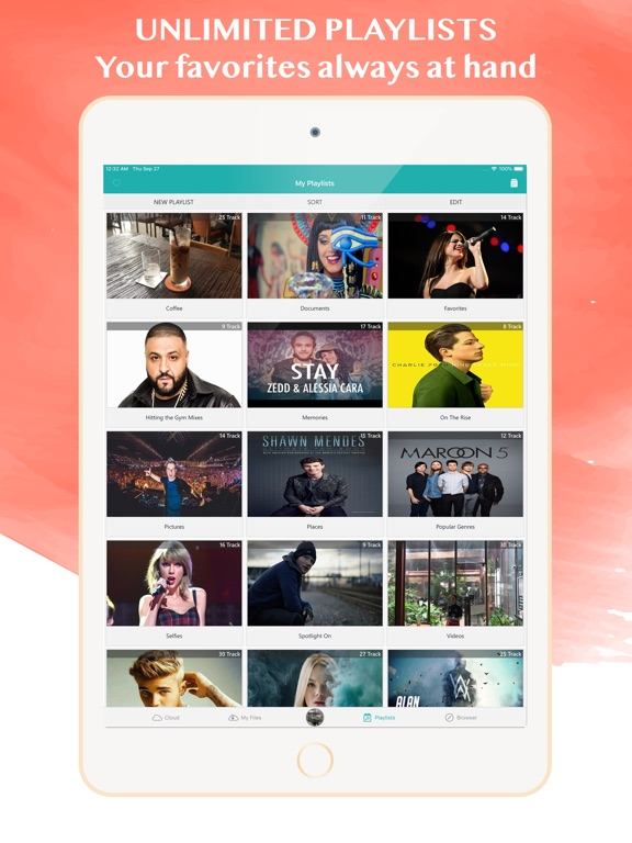 MyMedia: Cloud Music & Browser-ipad-3
