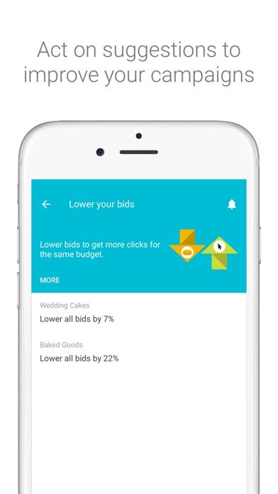 AdWords Screenshot 3