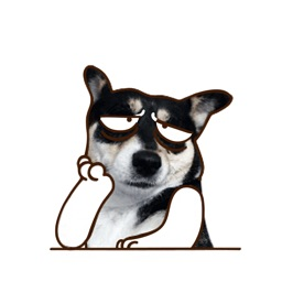 Husky Animated Stickers
