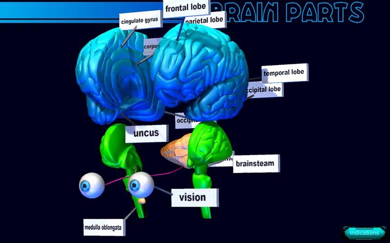 Brain Parts 3D скриншот программы 2