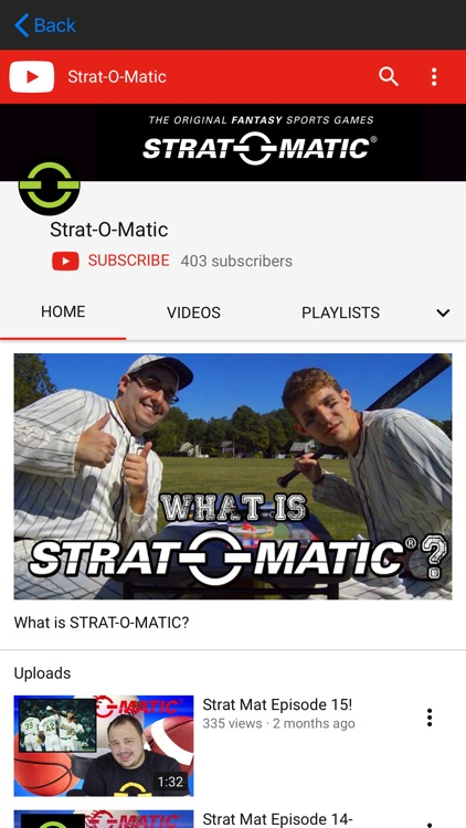 Strat-O-Matic Report Viewer screenshot-3