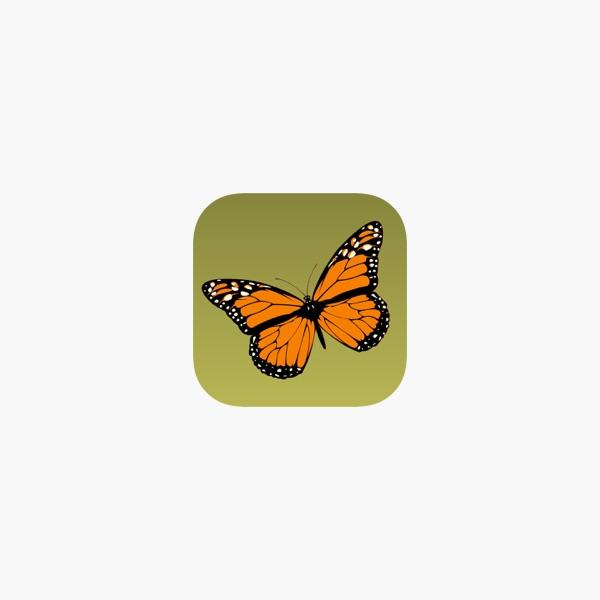 Nett Monarch Raupe Färbung Seite Zeitgenössisch - Ideen färben ...