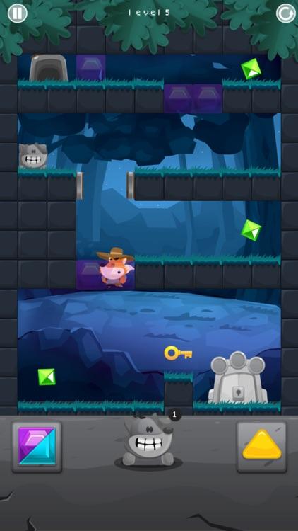 Fox Adventurer screenshot-3