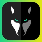 WOLFY - kurze Chat Geschichten icon