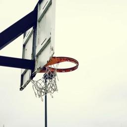 Trajectory- Basketball Physics